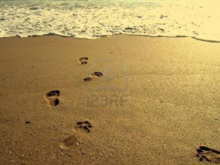 619568-huellas-en-la-arena-en-una-playa-al-amanecer