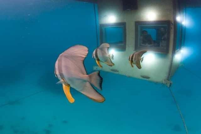 podwodny-hotel6